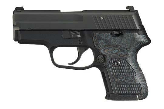 Sig Sauer P224 Extreme 9mm Luger Nitron Frame