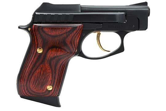 Taurus 25  .25 ACP (6.5mm)  Semi Auto Pistol UPC 725327100324